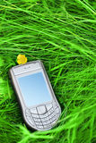 Cell phone. In the grass royalty free stock image