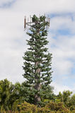 Cell phone antenna tree Royalty Free Stock Photography