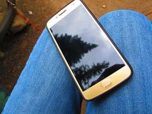 Cell Phone with Cracked Screen Showing Reflection. Of Pine Trees royalty free stock photo