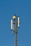 Cell Phone Tower. The top of a cell phone tower stock images