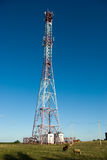 Cell phone tower in countryside. In sunny day Stock Photo