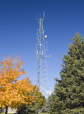 Cell Phone Tower Landscaped Stock Photography