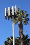 Cell Phone Tower Obstructs Palm Tree. A cell phone tower mimics a palm tree at the same time as it obstructs its growth in California Royalty Free Stock Photo