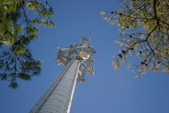 Cell Phone Tower Reaching to the Sky. From the Bottom Looking Up. Two trees bracket the Tower and Provide a Nice fram e of reference Stock Photo