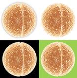 cell som 4 delar versioner royaltyfri illustrationer