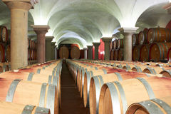 Cellar. Full of barrels with wine Royalty Free Stock Images