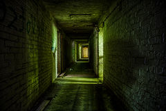 Cellar of abandoned building Stock Images