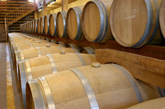 Cellar with barrels Stock Photo