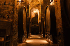 Cellar with barrels for storage of wine Royalty Free Stock Image