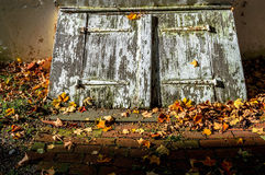 Cellar Door and Leaves Royalty Free Stock Photo