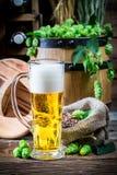 Cellar full of fresh beer Stock Image