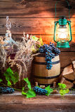 Cellar full of ingredients for homemade wine. On old wooden table Royalty Free Stock Image