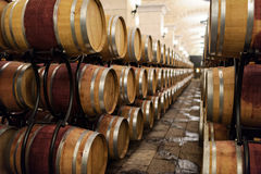 Cellar oak barrels. Oak barrels multiplication put the wine in the wine cellar Royalty Free Stock Photos