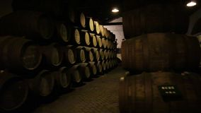 Cellar in Portugal stock video