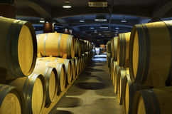 Cellar with rows of wine barrels in a Bulgarian winery. Selective focus Royalty Free Stock Images