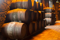 Cellar with wine barrels Stock Images
