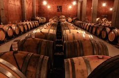 Cellar in winery Stock Photography