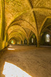 Cellarium Photographie stock