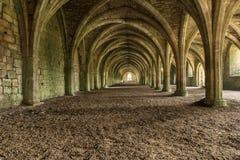 Cellarium arcato Cistercense fotografie stock libere da diritti