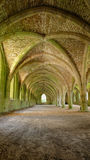 Cellarium of Fountains Abbey Royalty Free Stock Photos