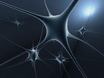 Celle del neurone Immagini Stock
