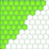 Celler gör grön vit Arkivfoton