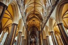 Celling inom den Salisbury domkyrkan, England Medevial arkitektur Selektivt fokusera kopiera avstånd arkivbilder