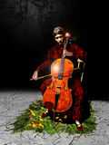 Cellist Stock Photos