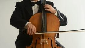 Cellist stock video