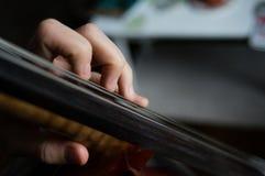 cellist imágenes de archivo libres de regalías