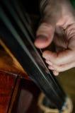 cellist stock fotografie