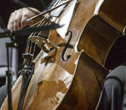 A cellist in concert. Close up stock photography