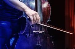 Cellist. Stock Photo