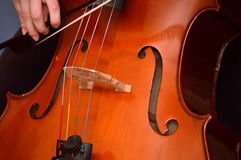 Cellist playing cello. With bow. Baroque bow Royalty Free Stock Photography
