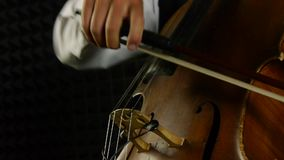 Cellist playing on cello. Strum the strings. stock video