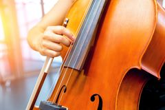 Close up of cello with bow in hands. Cellist playing violoncello musical instrument of orchestra royalty free stock photography