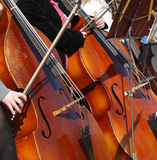 Cellists Stock Image