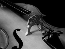 Cello. Black and white cello closeup Royalty Free Stock Photo