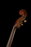 Cello. On the black background royalty free stock image