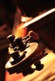 Cello. Detail of a classical cello royalty free stock photos