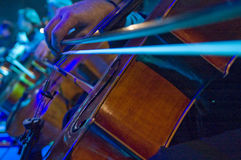 Cello. A night at the symphony concert - playing cello royalty free stock images