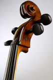 Cello. A neck and scroll of the cello royalty free stock photography
