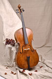 A cello in beige background Royalty Free Stock Images