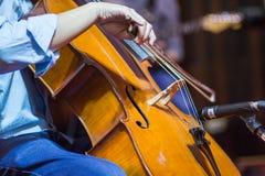 cello stock photo