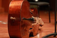 Cello concert. Musical instrument cello isolated On floor. Classical music. Close up of a cello . Close up of the hand and bow playing the cello royalty free stock photo