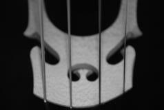 Cello Detail 4. Black and white detail of cello bridge Stock Photography
