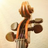 Cello fingerboard. A part of cello fingerboard closeup royalty free stock photo