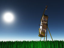 Cello on grass Stock Image