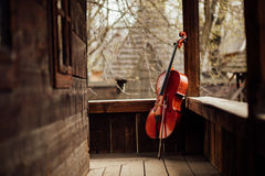 Cello leaning on a porch. Cello leaning on a wooden old porch royalty free stock photo