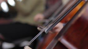Cello. Musicant play on cello stock video